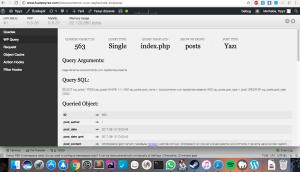 Debug barın çalıştırıldığı sayfadaki sorguları göstermesi.Wordpress hata ayıklama ekran görüntüsü